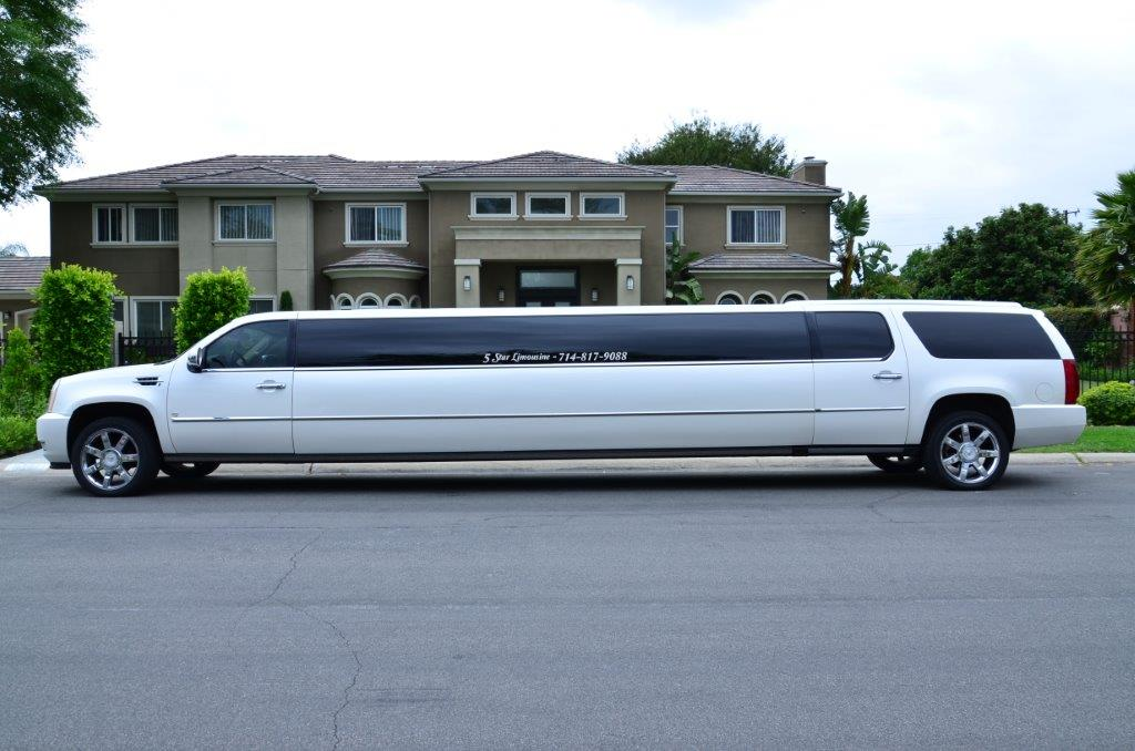 5 Star Limousine Birthday Party